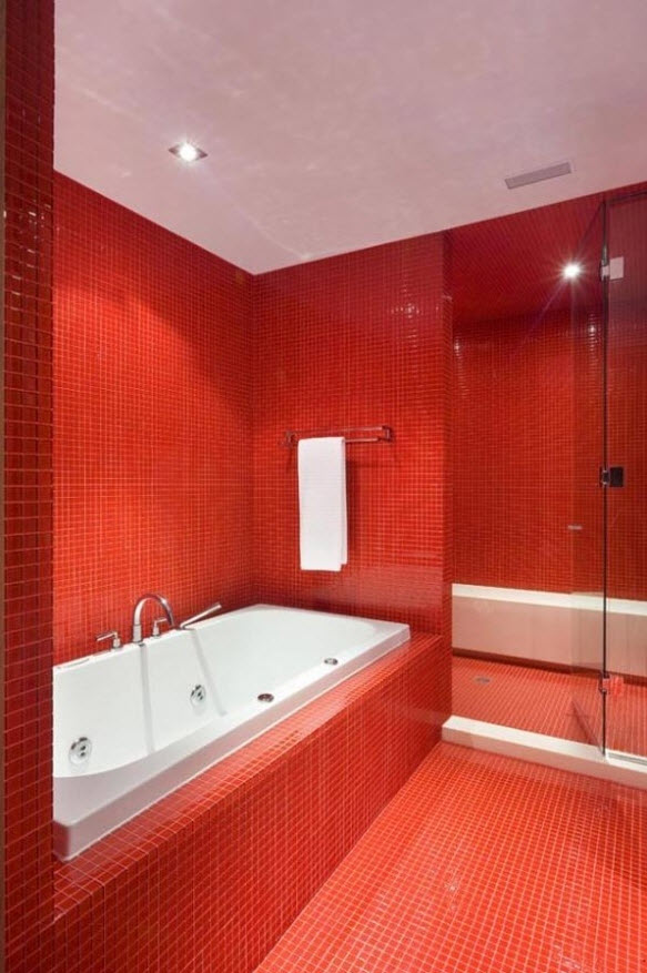 red_bathroom_floor_tiles_1