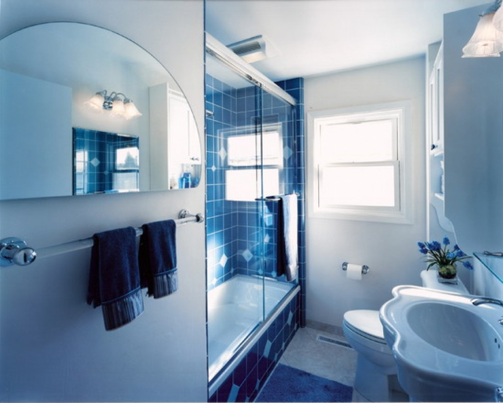cool blue white bathroom nuance with unique half