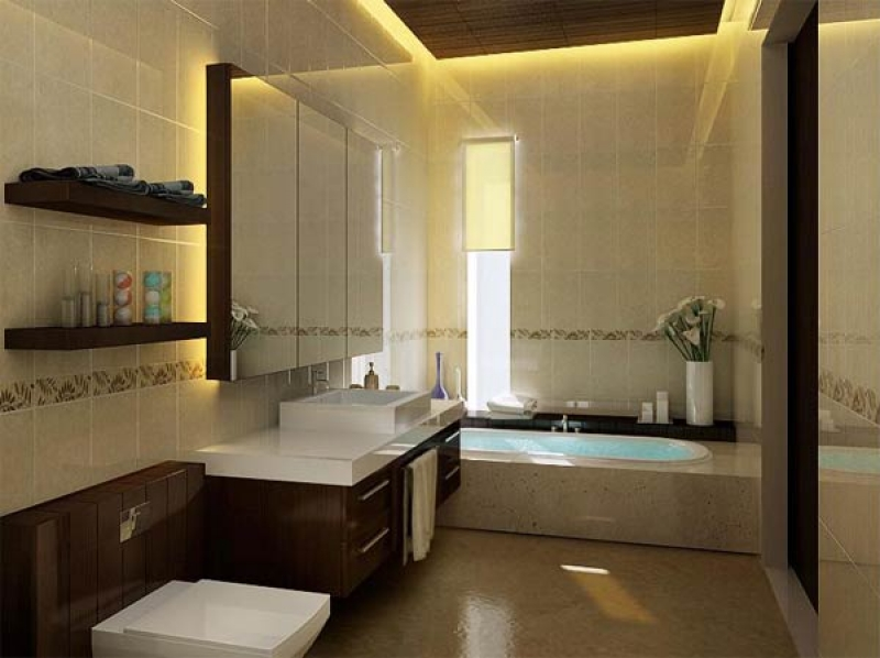 7476-photo-of-small-modern-bathroom-design-number-667_800x600