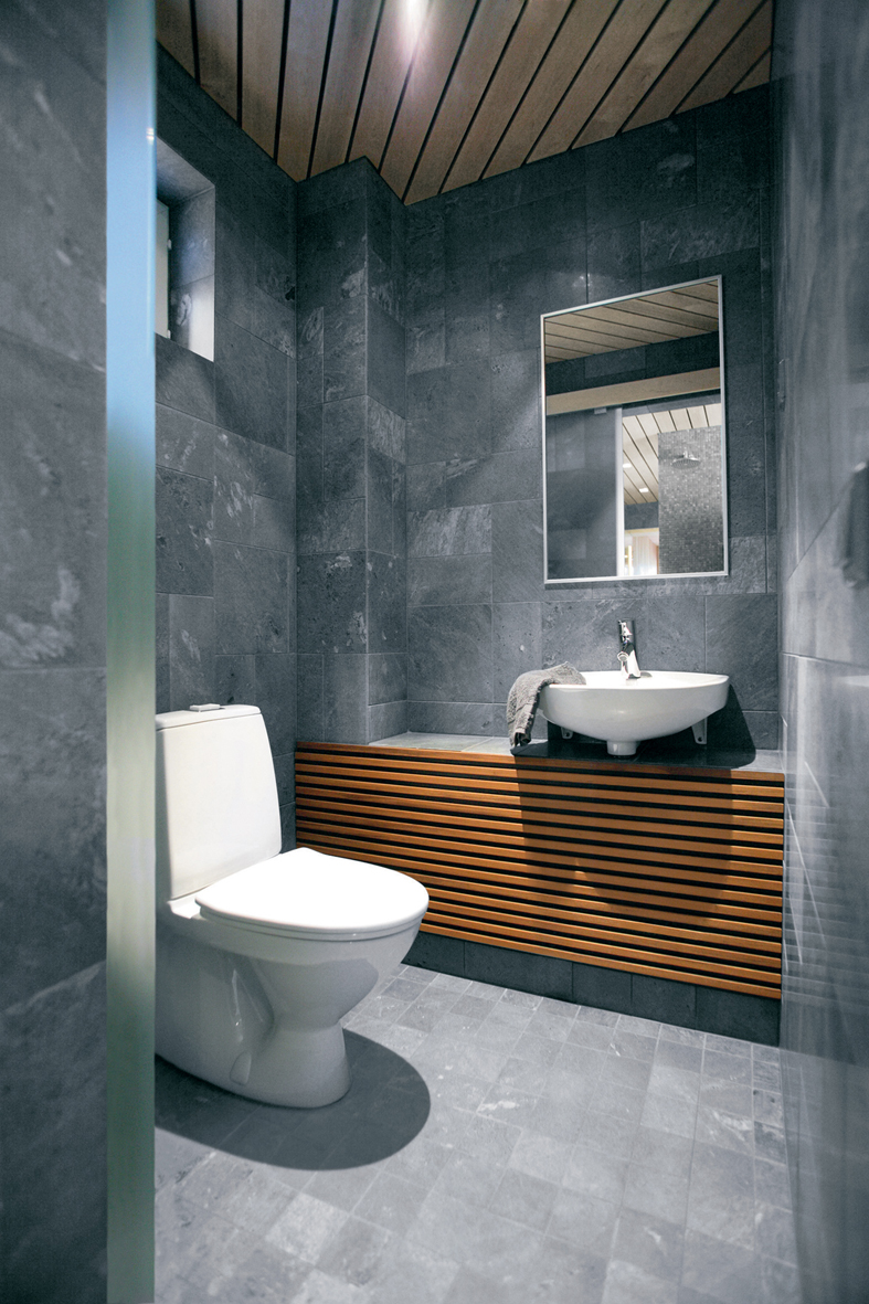 32 good ideas and pictures of modern bathroom tiles texture for Small toilet interior design