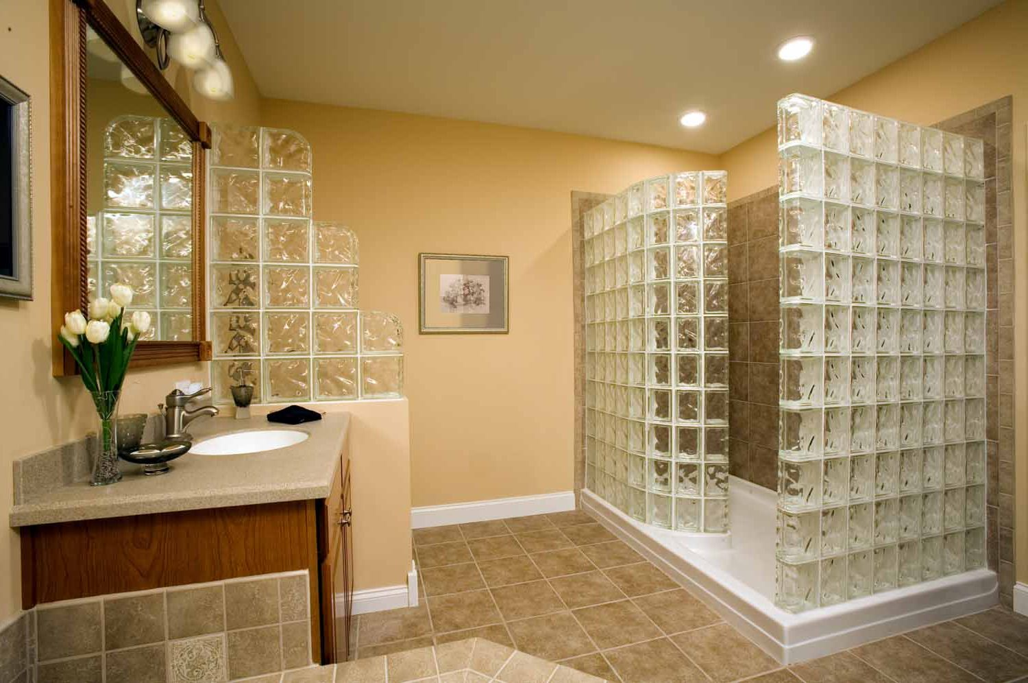 glass-block-ideas-traditional-small-bathroom-renovations